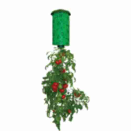 Pot for growing hanging crops (e.g. tomatoes)